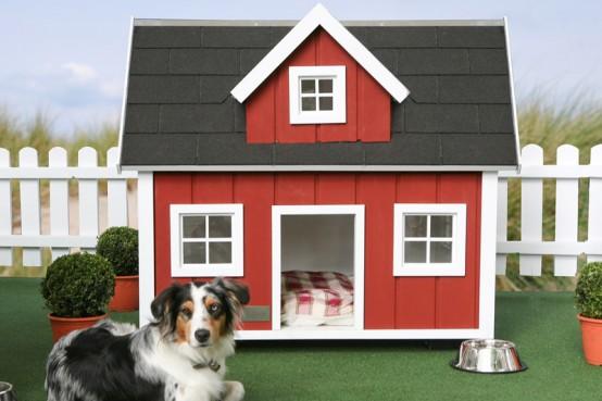 Conhe a as 10 casas mais incr veis para bicho de estima o zap em casa - Casas para perros pequenos ...