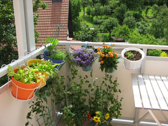 Aprenda a transformar a varanda em jardim finocr dito Como tener un lindo jardin