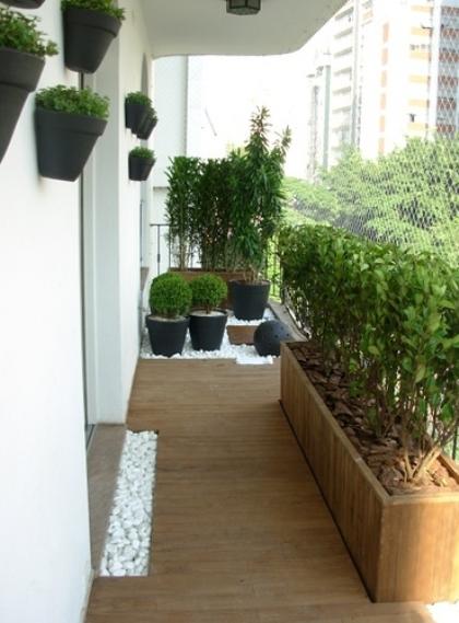 Plantas na varanda exigem cuidados com o vento; veja dicas ZAP em Casa -> Decoração De Varanda Com Vasos De Plantas