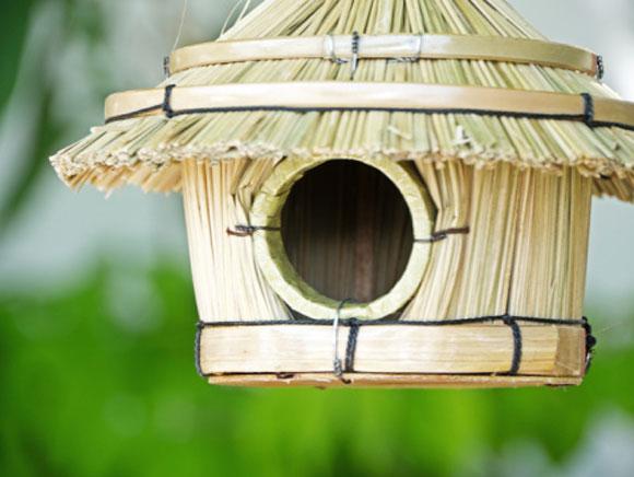 artesanato de bambu para jardim:Conheça 10 incríveis casas de passarinhos para o seu jardim –