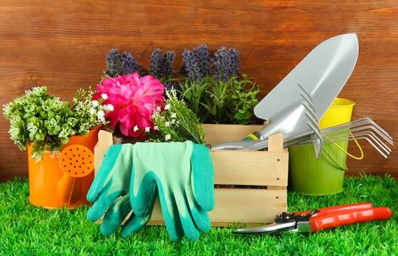 Podem ser usados, também, para guardar equipamentos de jardinagem