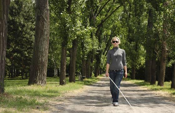 Jardim deve ser livre de plantas que atrapalhem o caminho de deficientes visuais (Foto: Thinkstock)
