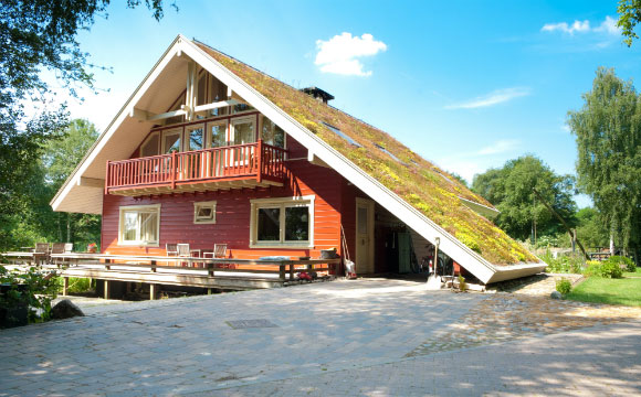 Telhado verde deixa o ambiente interno da casa mais fresco (Foto: Shutterstock)