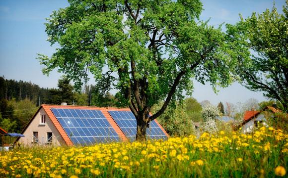 É possível ter uma casa com práticas sustentáveis para ajudar o meio ambiente e gerar economia (Fotos: Shutterstock)