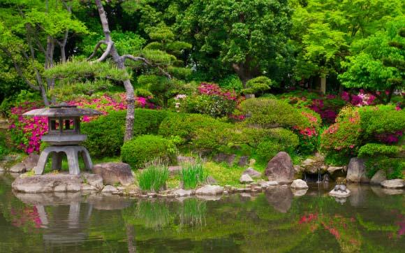 as texturas, formas e cores num jardim japonês (Fotos Shutterstock