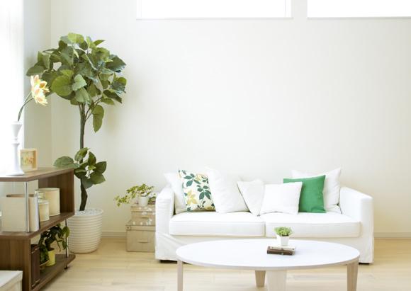 Sala de estar bem organizada (Foto: shutterStock)