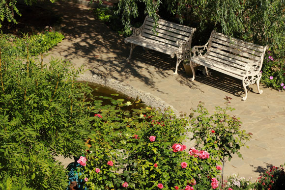 Aprenda a criar e cultivar uma horta em casa em pequenos espaços