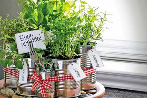 mini jardim de temperos : mini jardim de temperos:Tenha uma mini-horta prática e bonita (Fotos: Reprodução – HGTV)