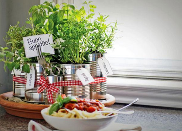 mini-horta em lata em casa