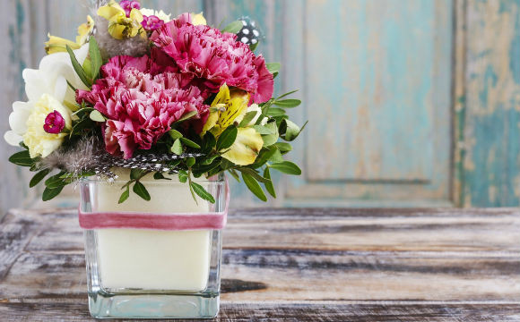 Love Diy Plantas para cultivar na Primavera