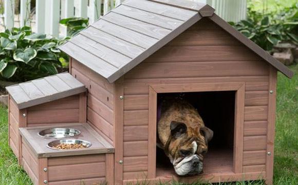 casinha_de_cachorro_madeira
