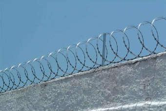 Concertina, também conhecida por ouriço, é instalada sobre muros e grades e aumenta a segurança