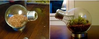 areia lâmpada