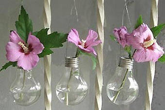 vasos lâmpada